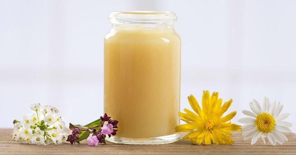Chiết xuất sữa ong chúa vàng