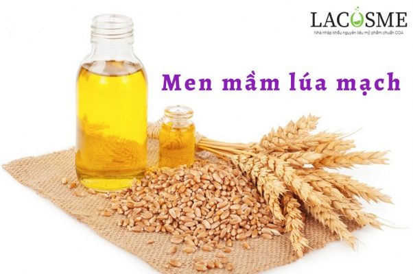 Chiết xuất lúa mạch